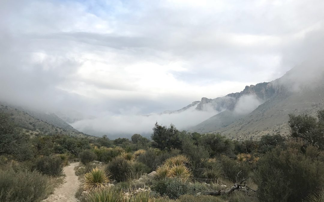 Guadalupe Mountains National Park, TX, 10/10-10/21